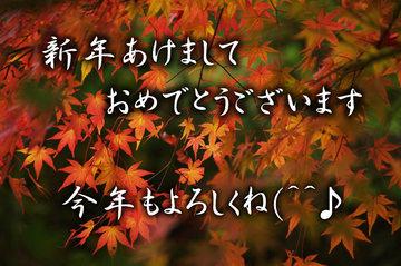 2011.01.01 b001.jpg